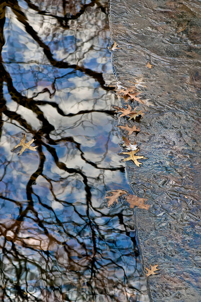 Bethesda Fountain in New York, Central Part water fountains, frozen water with leaves, nature photography with water,