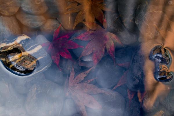 nature photography, fall season, art photographs of water, photographs by Brad Oliphant,