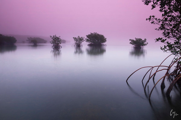 Constance Mier Photography - fine art prints of Biscayne Bay waterscapes