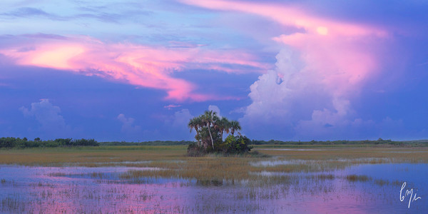 Constance Mier Photography - Fine art prints of Florida waterscapes