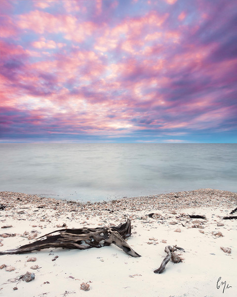 Everglades Beach Photography | Constance Mier Photography