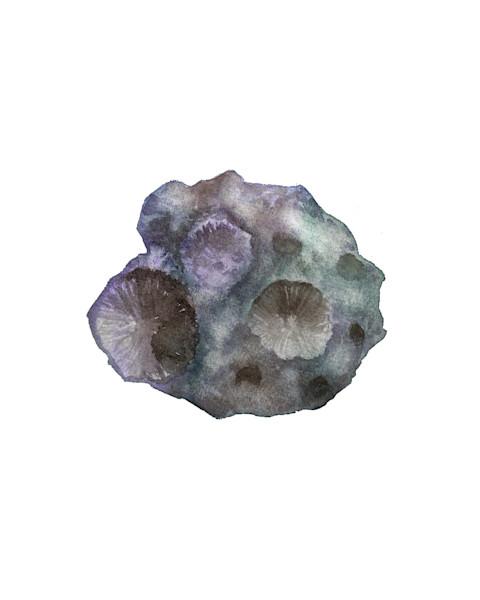 Original Asteroid