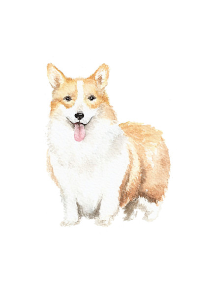 Corgi Original Watercolor Painting