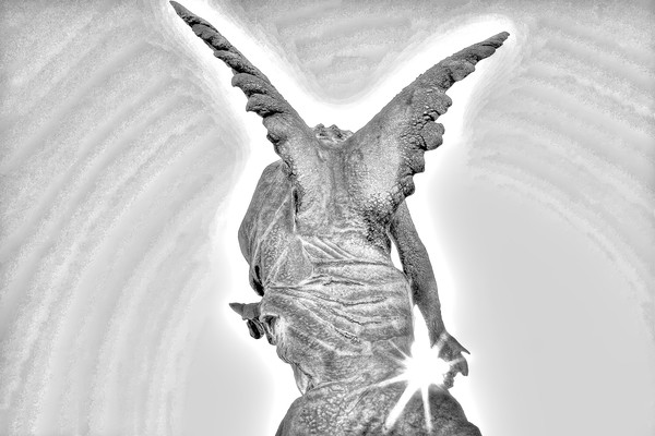 photographs of arch angels, black and white photography, photography of angels by Brad Oliphant,
