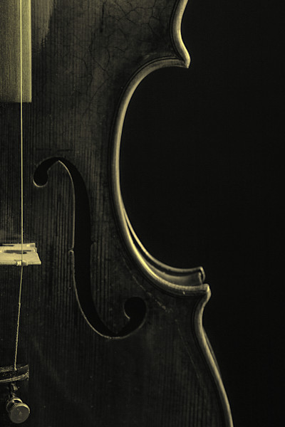 Body of an Antique Violin Imaage 1732.41