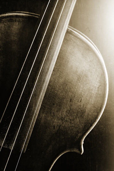 Top Light Violin Image in Sepia 1732.44