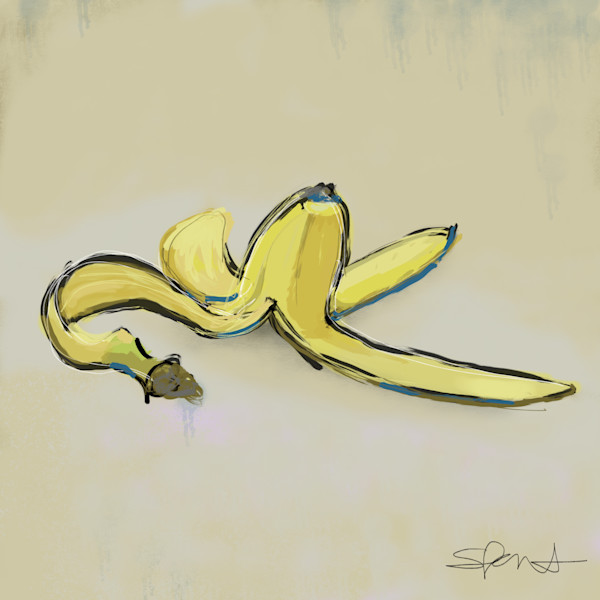 Still Life Art by Steph Fonteyn