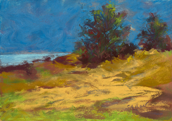 Dunes at Bailey's Harbor print by Dianne Saron.