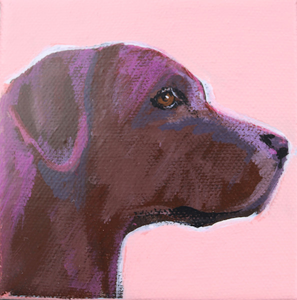MINI light Coral Chocolate Lab 4 x 4