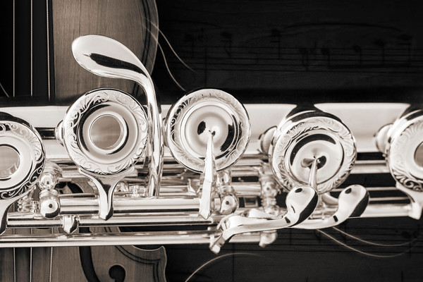 Flutes Metal Wall Art Photographs in Black and White