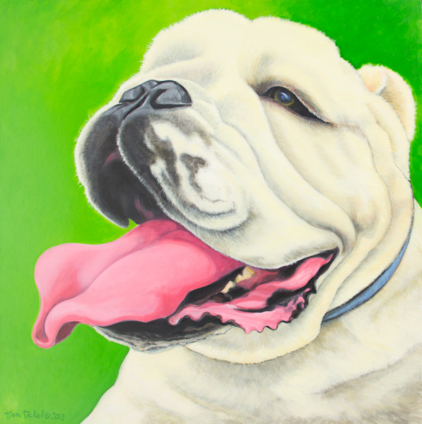 Bulldog by John Van Sickel | Kansas Art Gallery