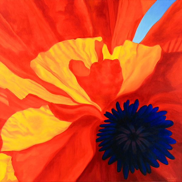 Poppy 1 by John Van Sickel | Kansas Art Gallery
