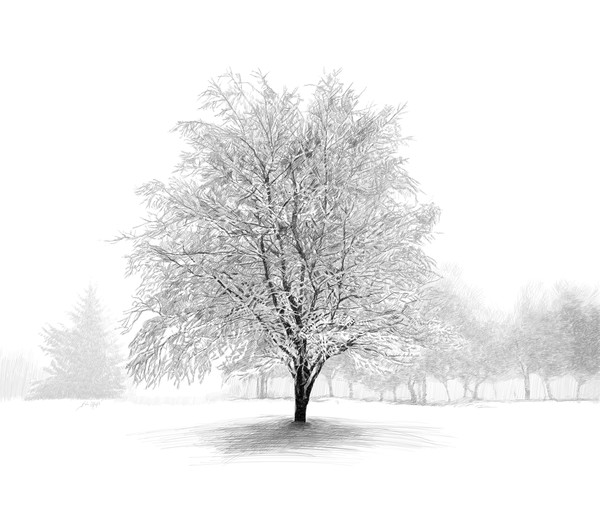 """Digital Etching titled """"Winter Tree"""" by Eric Wallis."""