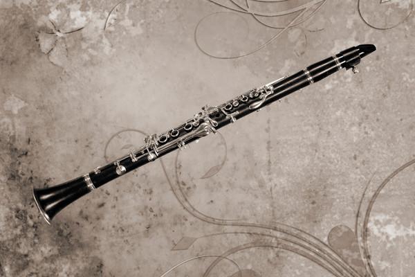 Canvas Art Clarinet Music Instrument 3260.01