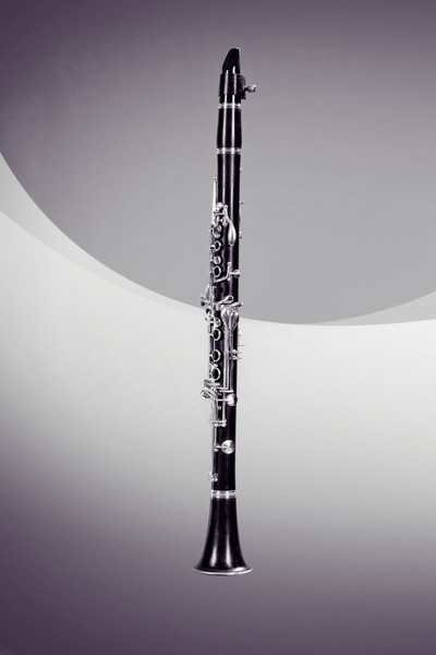 Clarinet Music Instrument Wall Art 3257.01