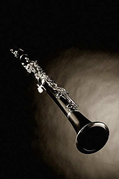 Wall Art Clarinet Music Instrument 3011.03