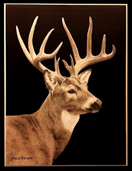 White-Tail Buck