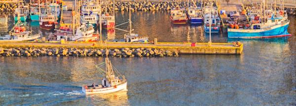 St. John's Fishery