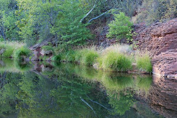 Summer on Oak Creek