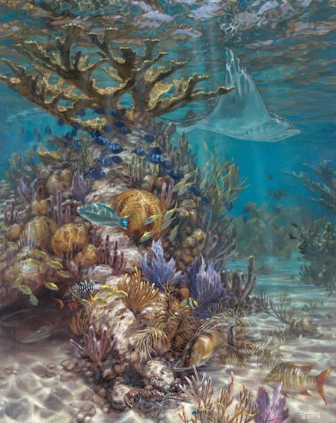Rays Reef