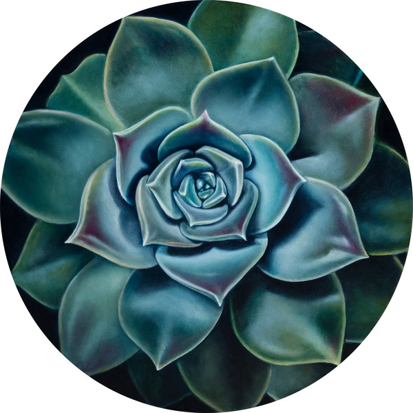 """Bloom in the Desert I"" by Ilse Kleyn 