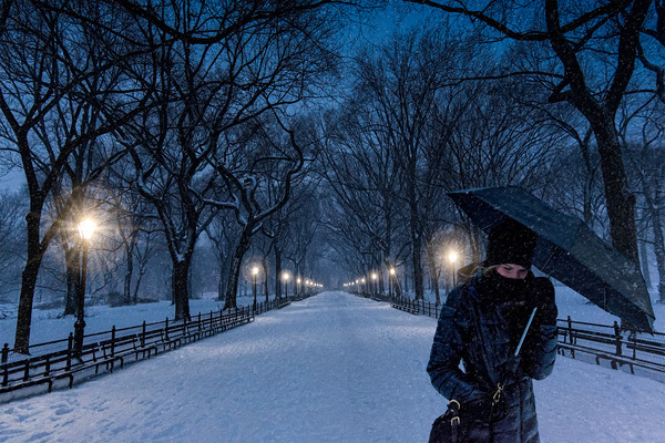 art photographs of the Literary Walk in Central Park, Central Park walkways and parks, winter scenes in New York,