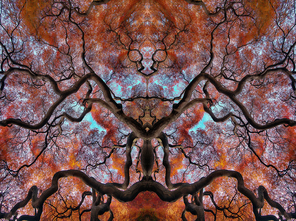alien figures, abstract art photographs, kaleidoscopes and mirror images,