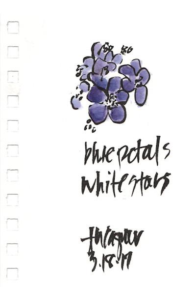 Blue Petals White Petals