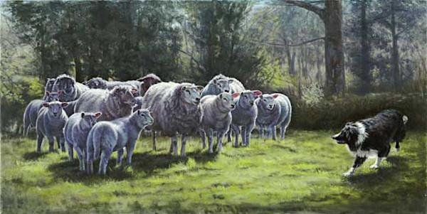 Irish Spring fine art print by Sally Berner.