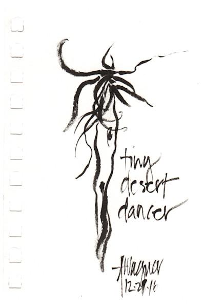 Tiny Desert Dancer