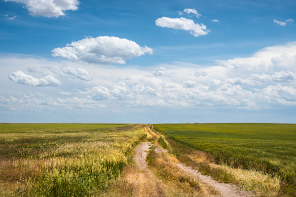 summer time photo, blue sky with green fields