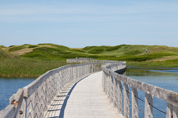 greenwich-beach, prince-edward-island, boardwalk, dunes