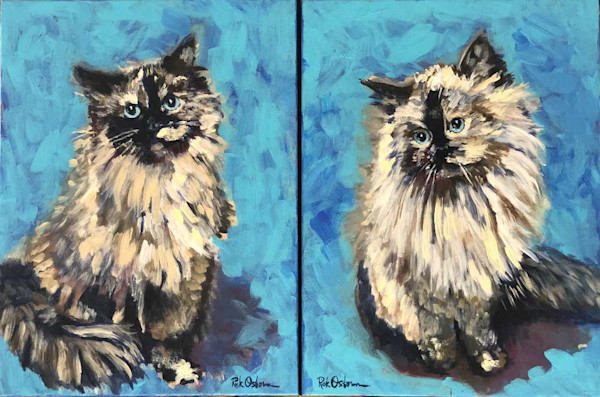 Cats-on-blue_mocrux