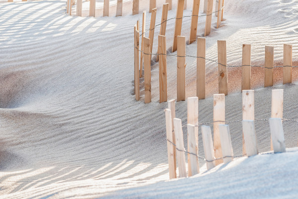 images of sand fences, art photographs of beaches, sand dunes and worlds oceans,