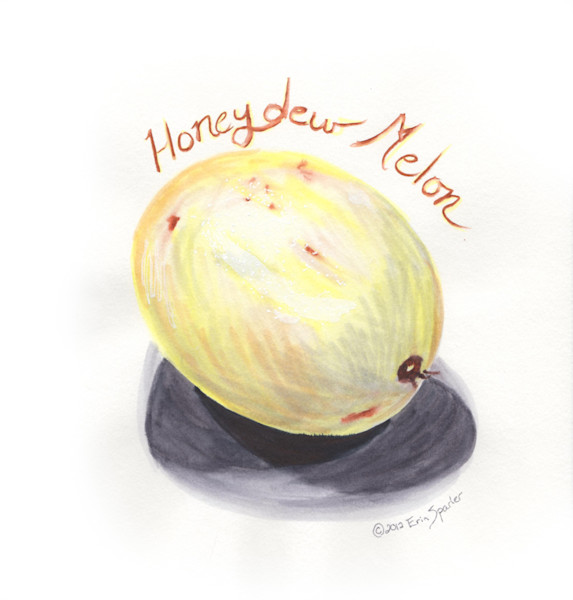 melon honeydew outside copy