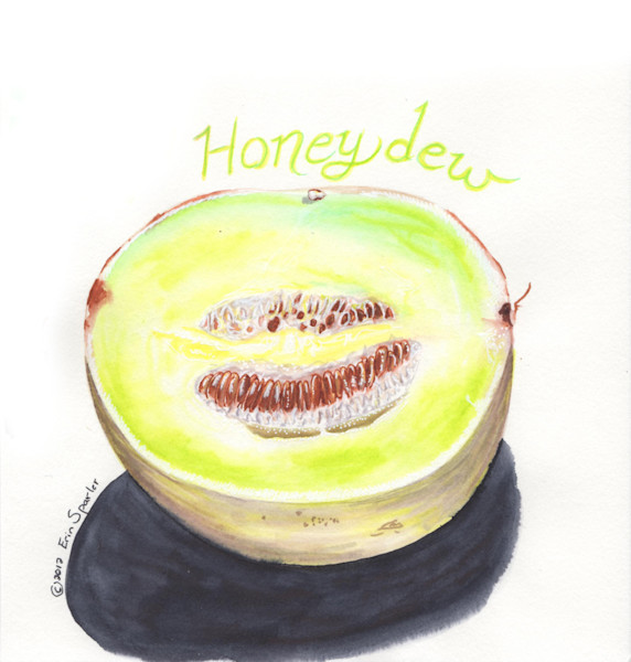 melon honeydew inside copy