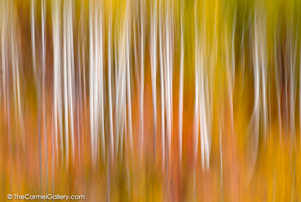 Abstract Photos
