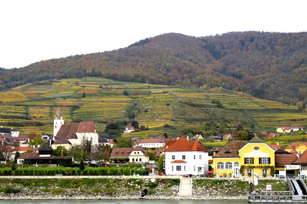 Krems, Austria landscape along the Danube IMG 1199