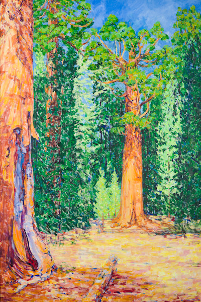 Giant Sequoia Tree Original Art and Prints by Joy Collier