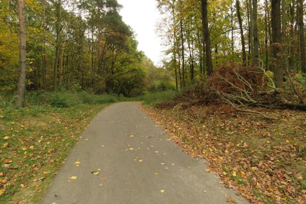 Pathway next to Danube River; Nuremburg, Germany IMG 0659