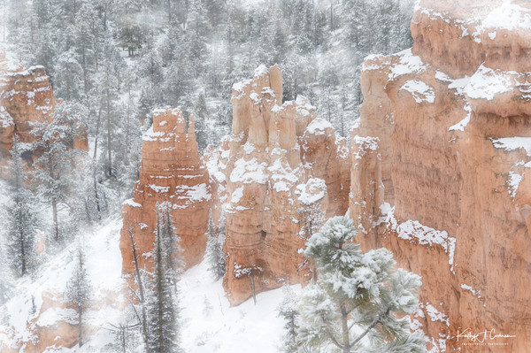 Snow in Bryce Paradise