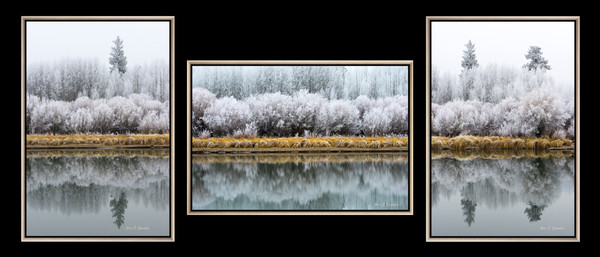 Ryan Ranch Meadow Triple (1810043TLNND8) Three Photographs Sold as a FRAMED Canvas Fine Art Print Set