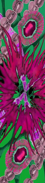 Magenta Flower Opihi Silk Scarf