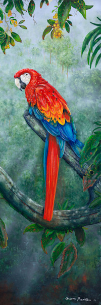 Soul Mates Red Macaw