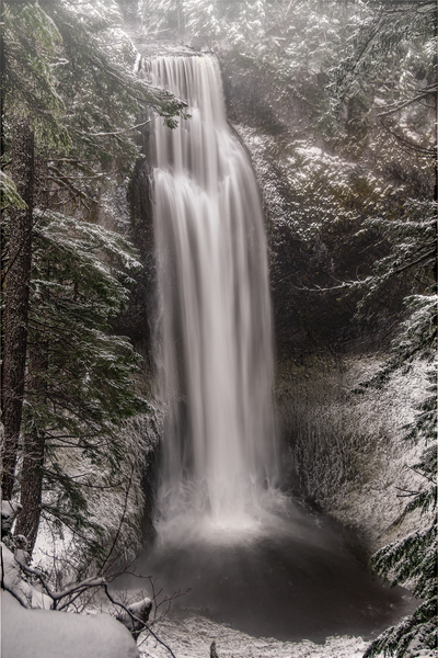 Reverie - Salt Creek Falls