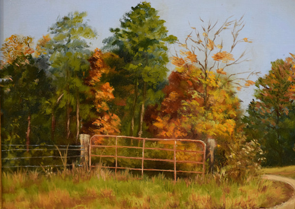 Fall at Gum Creek