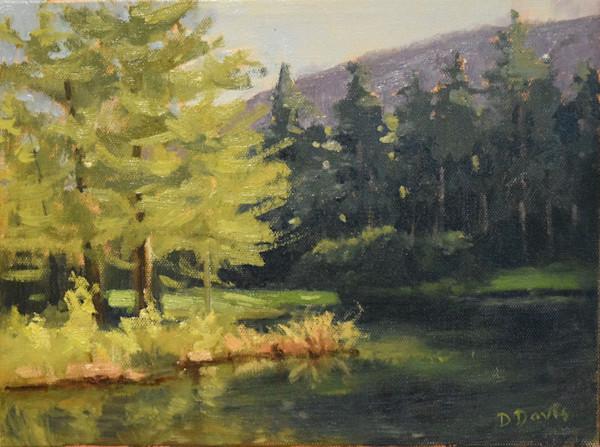 Original Paintings | Fine Art Prints on Canvas, Paper, and Metal by Artist Debra Davis