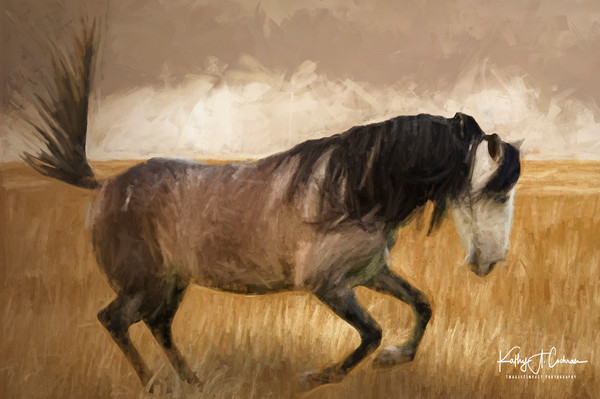 Stomping Equine
