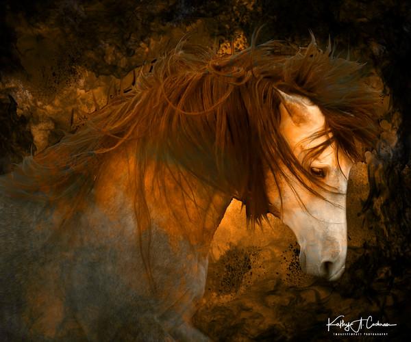 Equine Inferno