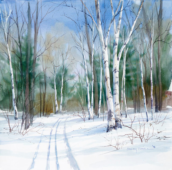 Birch Trail fine art print by Stacey Small Rupp.